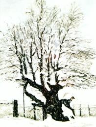 Gabon con neve di Gianni Cividati